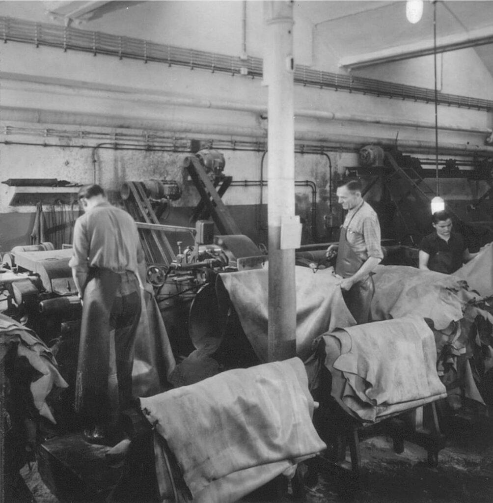 Lederhäuter werden für Hepcos Gürtelproduktion getrocknet und vorbereitet. Vermutlich Ende der 30er.